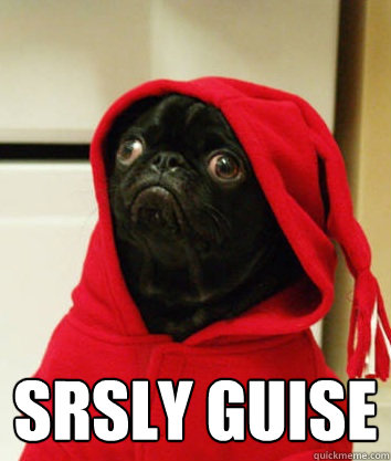 srsly guise - Serious Pug