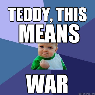 teddy this war means - Success Kid