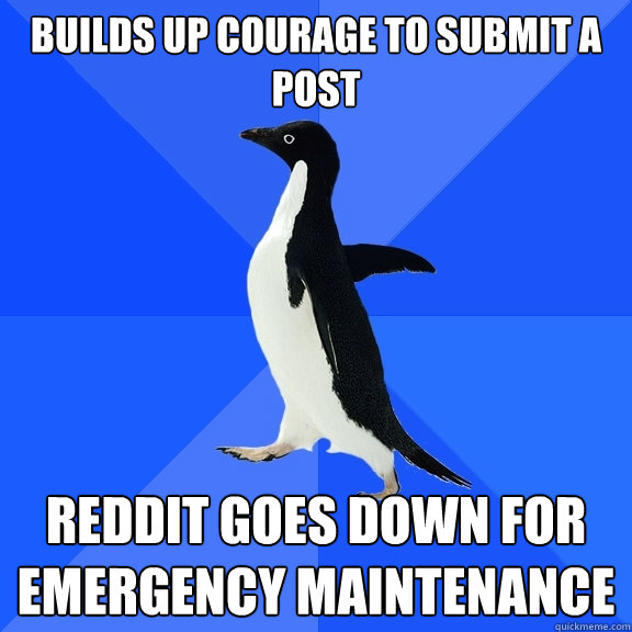 builds up courage to submit a post reddit goes down for emer - Socially Awkward Penguin