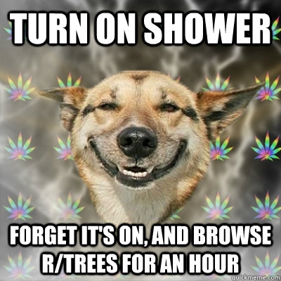 turn on shower forget its on and browse rtrees for an hou - Stoner Dog