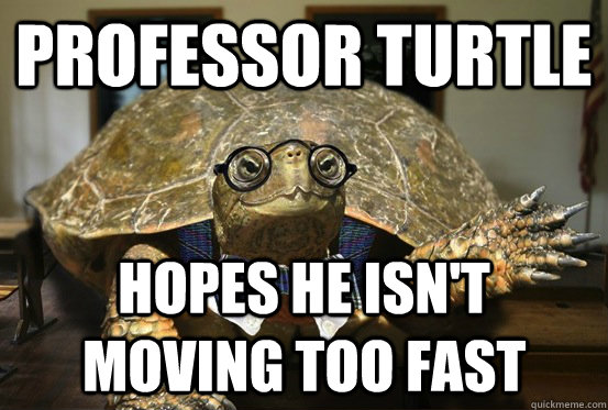professor turtle hopes he isnt moving too fast - Professor Turtle