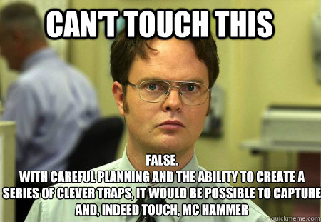 cant touch this false with careful planning and the abilit - Schrute