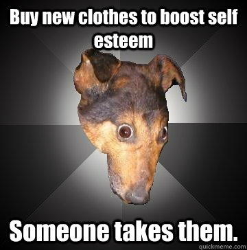 buy new clothes to boost self esteem someone takes them - Depression Dog