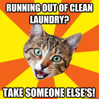 running out of clean laundry take someone elses - Bad Advice Cat