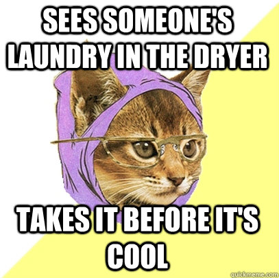 sees someones laundry in the dryer takes it before its coo - Hipster Kitty