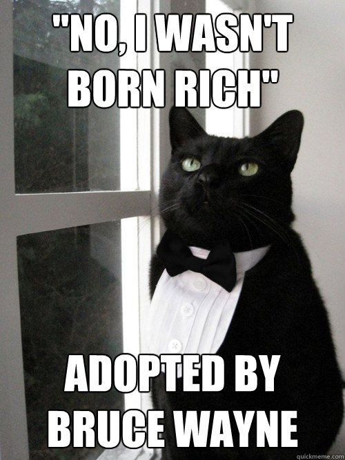 no i wasnt born rich adopted by bruce wayne - One Percent Cat