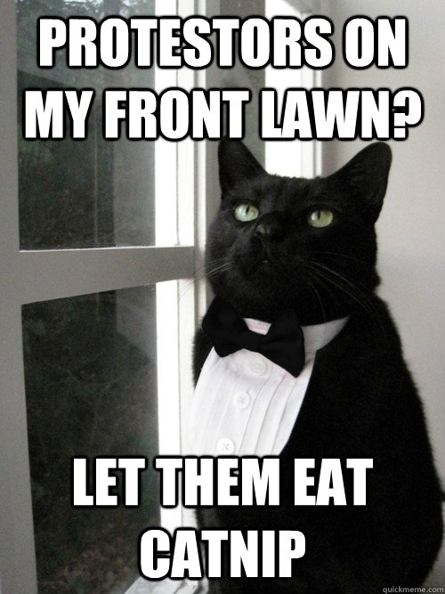 protestors on my front lawn let them eat catnip - One Percent Cat