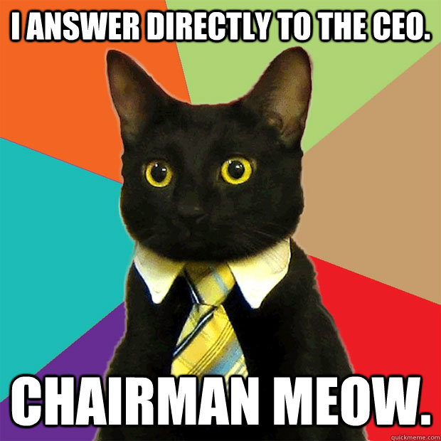 i answer directly to the ceo chairman meow - Business Cat