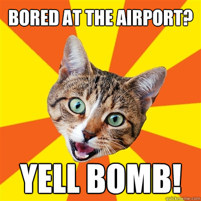 bored at the airport yell bomb - Bad Advice Cat