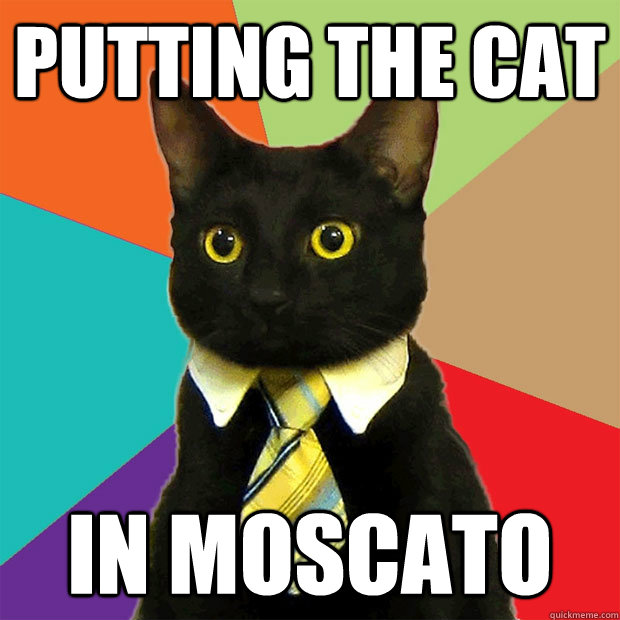 putting the cat in moscato - Business Cat