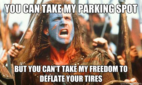 you can take my parking spot but you cant take my freedom t - Freedom Fighter