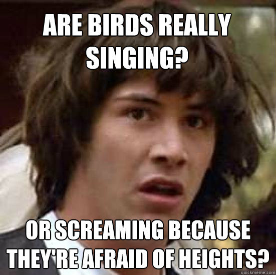 are birds really singing or screaming because theyre afrai - conspiracy keanu