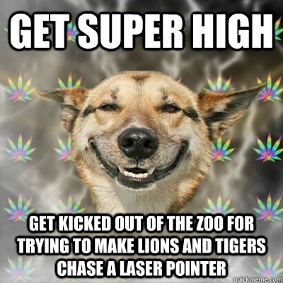 get super high get kicked out of the zoo for trying to make  - Stoner Dog