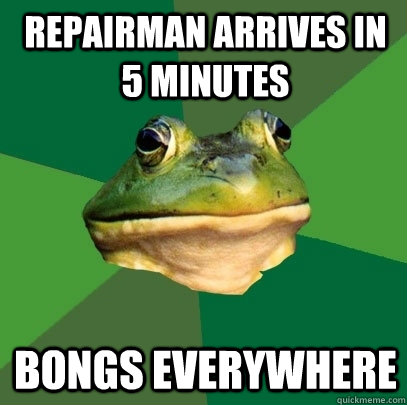 repairman arrives in 5 minutes bongs everywhere - Foul Bachelor Frog