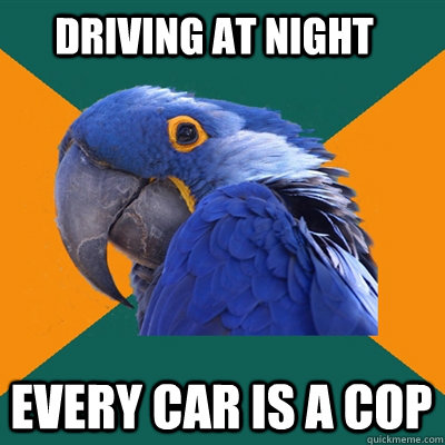 driving at night every car is a cop - Paranoid Parrot