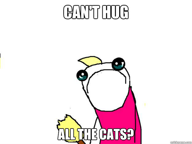 cant hug all the cats - All the things sad