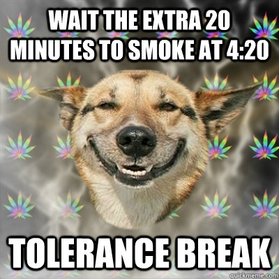 wait the extra 20 minutes to smoke at 420 tolerance break - Stoner Dog