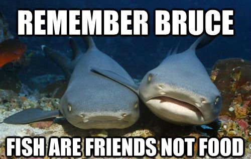 Remember bruce fish are friends not food compassionate for Fish are friends not food