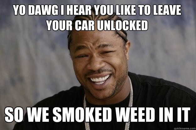 yo dawg i hear you like to leave your car unlocked so we smo - Xzibit meme