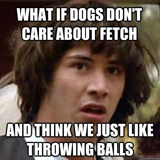 what if dogs dont care about fetch and think we just like t - conspiracy keanu