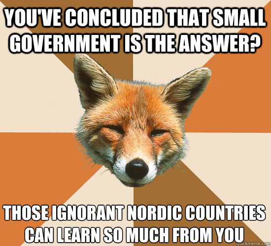 youve concluded that small government is the answer those  - Condescending Fox