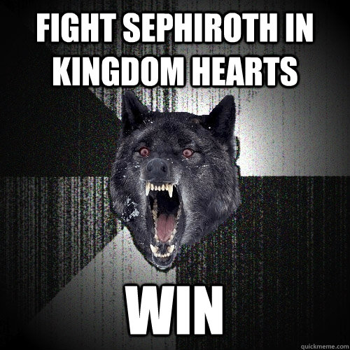 fight sephiroth in kingdom hearts win - Insanity Wolf
