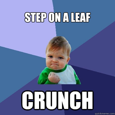 step on a leaf crunch - Success Kid