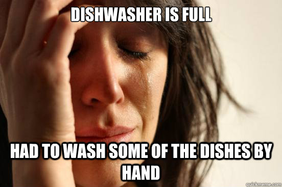 dishwasher is full had to wash some of the dishes by hand - First World Problems