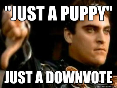 just a puppy just a downvote - Downvoting Roman