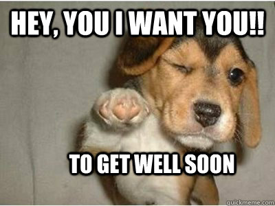 get well soon puppy