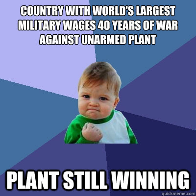 country with worlds largest military wages 40 years of war  - Success Kid