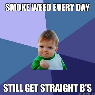 smoke weed every day still get straight bs - Success Kid