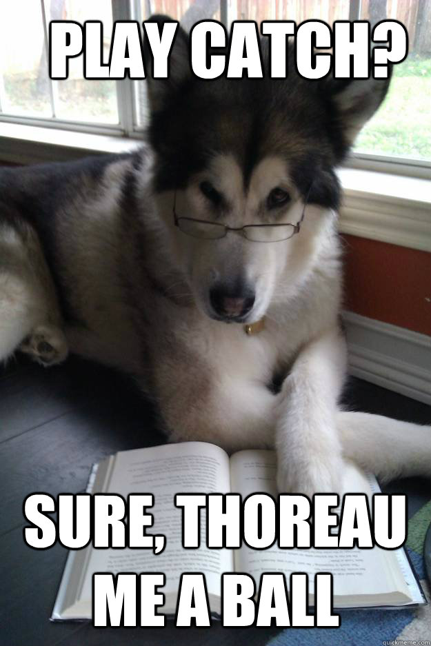 play catch sure thoreau me a ball - Condescending Literary Pun Dog