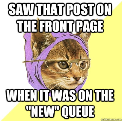 saw that post on the front page when it was on the new que - Hipster Kitty