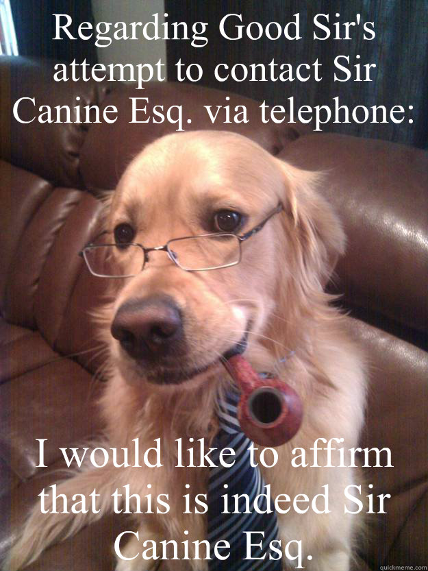 regarding good sirs attempt to contact sir canine esq via  - Sir Canine Esq.
