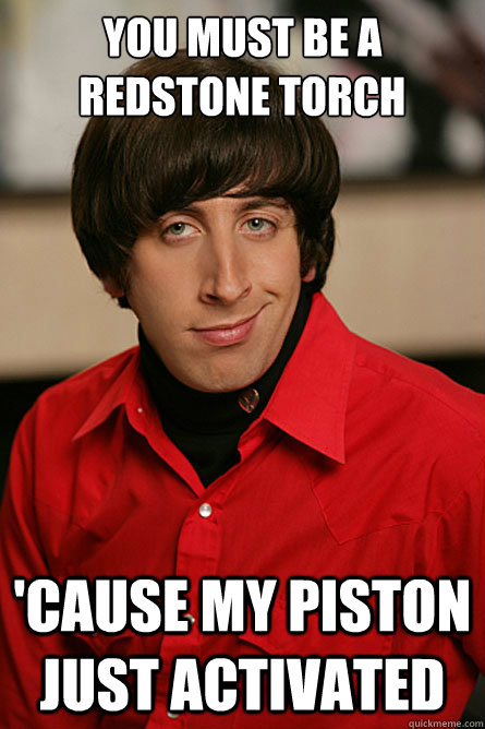 you must be a redstone torch cause my piston just activated - Pickup Line Scientist