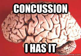 concussion i has it - NHL Concussion