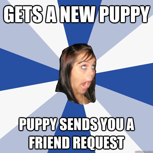gets a new puppy puppy sends you a friend request - Annoying Facebook Girl