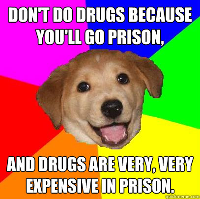dont do drugs because youll go prison and drugs are very - Advice Dog