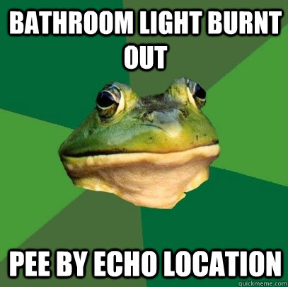 bathroom light burnt out pee by echo location  - Foul Bachelor Frog