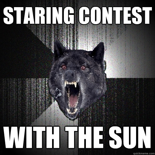 staring contest with the sun - Insanity Wolf