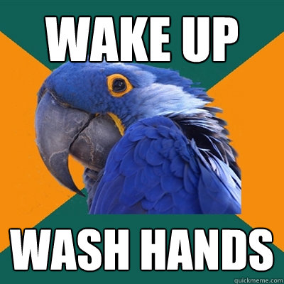 wake up wash hands - Paranoid Parrot