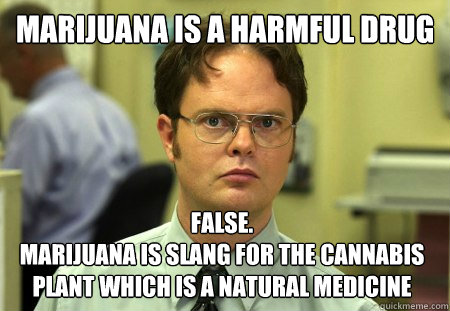 marijuana is a harmful drug false marijuana is slang for t - Dwight