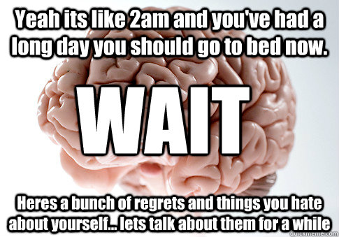 yeah its like 2am and youve had a long day you should go to - Scumbag Brain