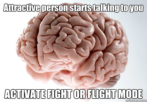 attractive person starts talking to you activate fight or fl - Scumbag Brain