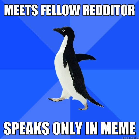 meets fellow redditor speaks only in meme - Socially Awkward Penguin