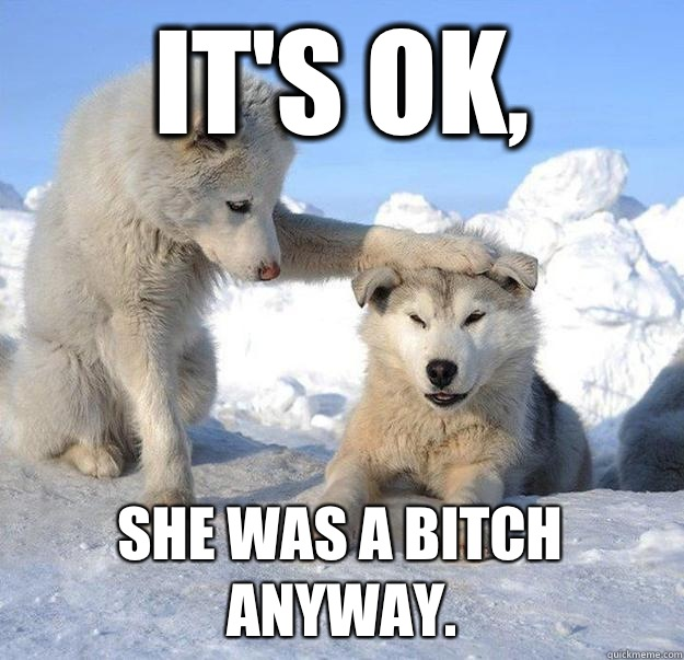 Its ok She was a bitch anyway - Caring Husky