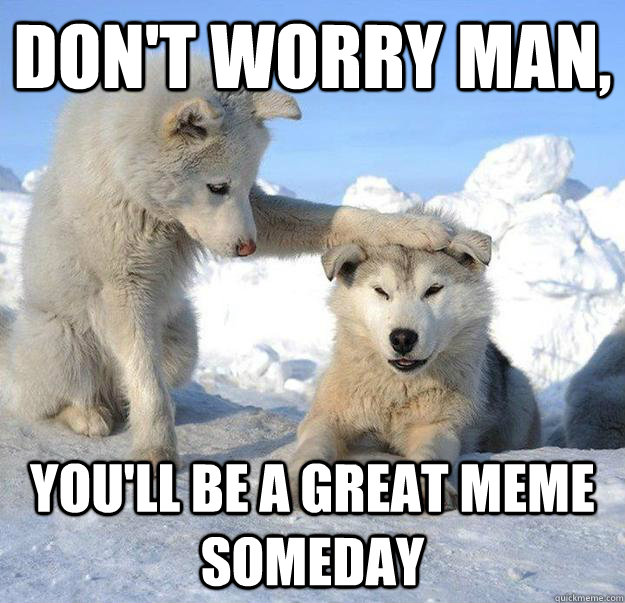 dont worry man youll be a great meme someday - Caring Husky
