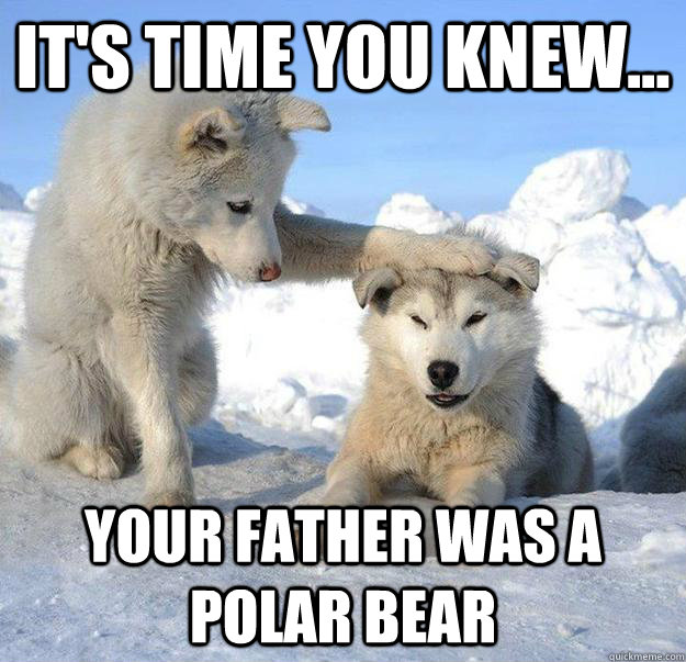 its time you knew your father was a polar bear - Caring Husky