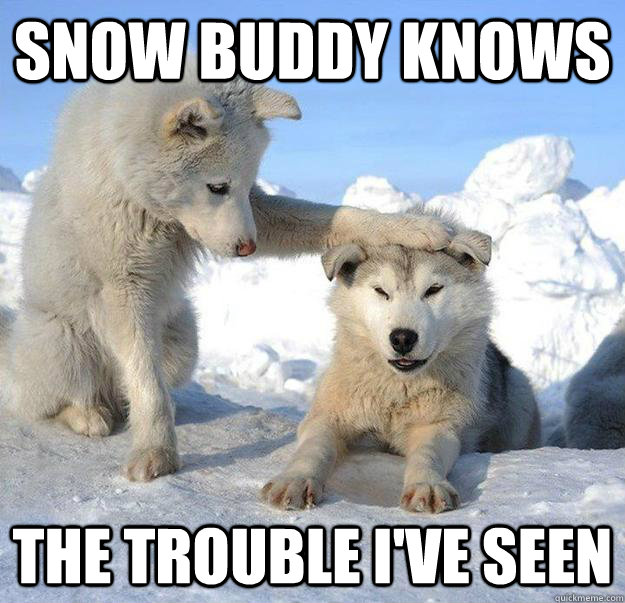 snow buddy knows the trouble ive seen - Caring Husky